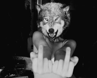 fuck_you_said_the_wolf